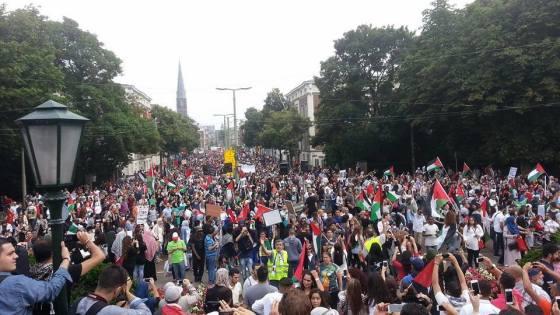 foto Palestina demonstratie Den Haag